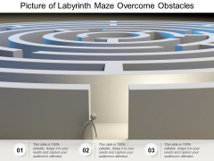 Picture Of Labyrinth Maze Overcome Obstacles Ppt PowerPoint Presentation Ideas Template