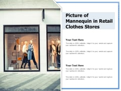 Picture Of Mannequin In Retail Clothes Stores Ppt PowerPoint Presentation Icon Graphics PDF