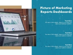 Picture Of Marketing Reports Dashboards Ppt PowerPoint Presentation Visual Aids Backgrounds