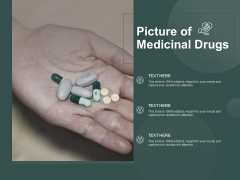 Picture Of Medicinal Drugs Ppt PowerPoint Presentation Styles Themes