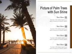 Picture Of Palm Trees With Sun Shine Ppt PowerPoint Presentation Icon Gridlines PDF