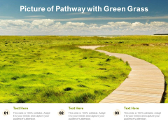 Picture Of Pathway With Green Grass Ppt PowerPoint Presentation Backgrounds PDF