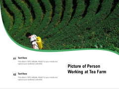 Picture Of Person Working At Tea Farm Ppt PowerPoint Presentation Gallery Graphics PDF