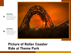 Picture Of Roller Coaster Ride At Theme Park Ppt PowerPoint Presentation File Model PDF