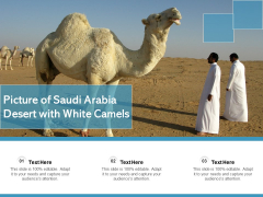 Picture Of Saudi Arabia Desert With White Camels Ppt PowerPoint Presentation File Graphic Tips PDF