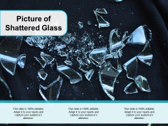Picture Of Shattered Glass Ppt PowerPoint Presentation Infographic Template Example File