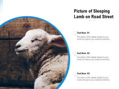 Picture Of Sleeping Lamb On Road Street Ppt PowerPoint Presentation File Infographics PDF