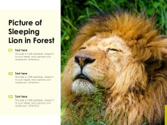 Picture Of Sleeping Lion In Forest Ppt PowerPoint Presentation File Structure PDF