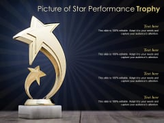 Picture Of Star Performance Trophy Ppt PowerPoint Presentation Infographic Template Infographic Template