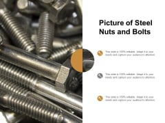 Picture Of Steel Nuts And Bolts Ppt PowerPoint Presentation Gallery Layouts