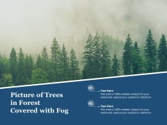 Picture Of Trees In Forest Covered With Fog Ppt PowerPoint Presentation Pictures Aids PDF