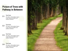 Picture Of Trees With Pathway In Between Ppt PowerPoint Presentation Infographic Template Layout PDF