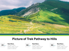 Picture Of Trek Pathway To Hills Ppt PowerPoint Presentation Layouts Layout Ideas PDF