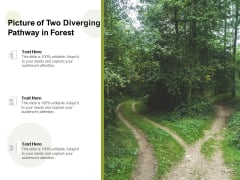 Picture Of Two Diverging Pathway In Forest Ppt PowerPoint Presentation Layouts Show PDF