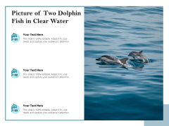 Picture Of Two Dolphin Fish In Clear Water Ppt PowerPoint Presentation File Graphic Images PDF