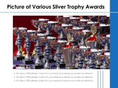 Picture Of Various Silver Trophy Awards Ppt PowerPoint Presentation Gallery Professional PDF