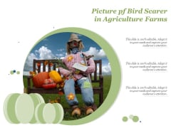 Picture Pf Bird Scarer In Agriculture Farms Ppt PowerPoint Presentation Inspiration Vector PDF