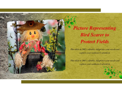 Picture Representing Bird Scarer To Protect Fields Ppt PowerPoint Presentation Visual Aids Gallery PDF