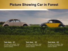 Picture Showing Car In Forest Ppt PowerPoint Presentation Professional Infographic Template PDF