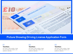 Picture Showing Driving License Application Form Ppt PowerPoint Presentation File Example Topics PDF
