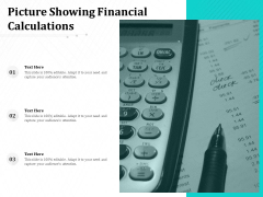 Picture Showing Financial Calculations Ppt PowerPoint Presentation Portfolio Rules