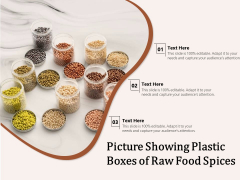 Picture Showing Plastic Boxes Of Raw Food Spices Ppt PowerPoint Presentation Professional Samples PDF