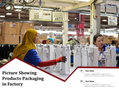 Picture Showing Products Packaging In Factory Ppt PowerPoint Presentation Icon Shapes PDF