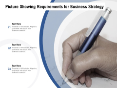 Picture Showing Requirements For Business Strategy Ppt PowerPoint Presentation Portfolio Slides