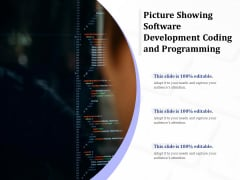 Picture Showing Software Development Coding And Programming Ppt PowerPoint Presentation Professional Design Ideas PDF