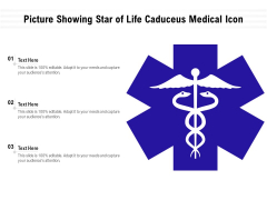 Picture Showing Star Of Life Caduceus Medical Icon Ppt PowerPoint Presentation File Icon PDF