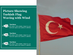 Picture Showing Turkish Flag Waving With Wind Ppt PowerPoint Presentation File Portfolio PDF