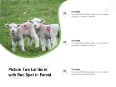 Picture Two Lambs In With Red Spot In Forest Ppt PowerPoint Presentation Icon Background Images PDF