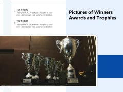 Pictures Of Winners Awards And Trophies Ppt PowerPoint Presentation Infographics Templates PDF