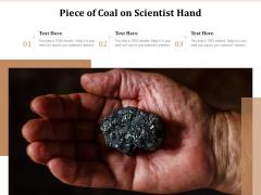 Piece Of Coal On Scientist Hand Ppt PowerPoint Presentation Slides Skills PDF