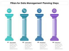 Pillars For Data Management Planning Steps Ppt PowerPoint Presentation Gallery Graphics Download PDF