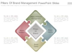 Pillars Of Brand Management Powerpoint Slides