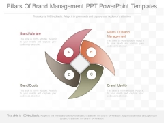 Pillars Of Brand Management Ppt Powerpoint Templates