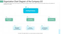 Pitch Presentation Raise Money Spot Market Organization Chart Diagram Of The Company Sample PDF