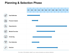 Planning And Selection Phase Ppt PowerPoint Presentation Portfolio Visual Aids