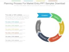Planning Process For Market Entry Ppt Samples Download