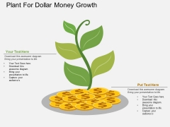 Plant For Dollar Money Growth Powerpoint Template