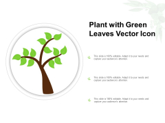 Plant With Green Leaves Vector Icon Ppt Model Diagrams PDF