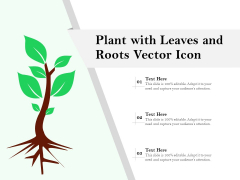 Plant With Leaves And Roots Vector Icon Ppt PowerPoint Presentation Summary Tips PDF