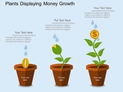 Plants Displaying Money Growth Powerpoint Templates