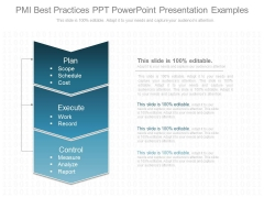 Pmi Best Practices Ppt Powerpoint Presentation Examples