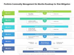 Portfolio Commodity Management Six Months Roadmap For Risk Mitigation Elements