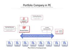 Portfolio Company In PE Ppt PowerPoint Presentation Summary Graphics PDF