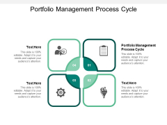 Portfolio Management Process Cycle Ppt PowerPoint Presentation Professional Backgrounds Cpb