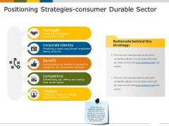 Positioning Strategies Consumer Durable Sector Ppt PowerPoint Presentation Outline Designs Download