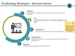 Positioning Strategies Services Sector Ppt PowerPoint Presentation Portfolio Portrait